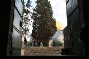 The closest I have ever been to the Dome of the Rock. A month ago, we had free access to get this close, without reprisal.