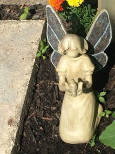the angel in my garden